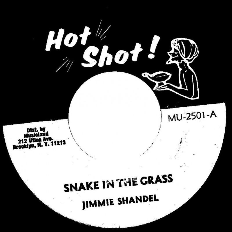 "(7"") JIMMIE SHANDEL - SNAKE IN THE GRASS / THE DEMONS - SNAKE DUB"