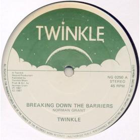 "(12"") TWINKLE - BREAKING DOWN THE BARRIERS / DUB"