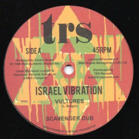 "(12"") ISRAEL VIBRATION - VULTURES / JAILHOUSE ROCKING"