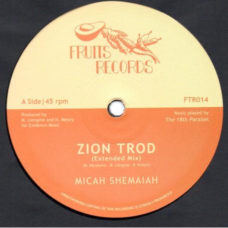 "(12"") MICAH SHEMAIAH - ZION TROD / SOUL RIDER"