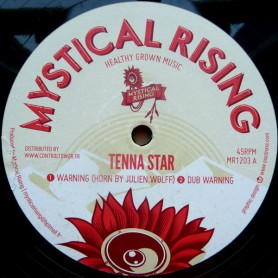 "(12"") TENNA STAR - WARNING / MYSTICAL RISING - HAIL SPIRIT"