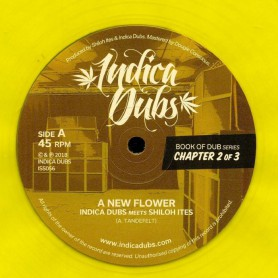 "(12"") INDICA DUBS MEETS SHILOH ITES - BOOK OF DUB SERIES CHAPTER 2 OF 3"