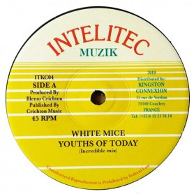 "(7"") WHITE MICE - YOUTHS OF TODAY (Incredible Mix) / DUB"