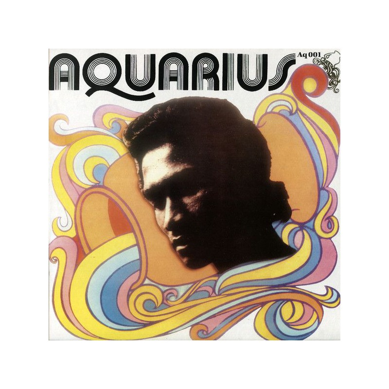 (LP) HERMAN CHIN LOY - AQUARIUS DUB
