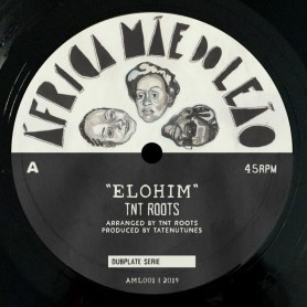 "(10"") TNT ROOTS - ELOHIM / DUB"