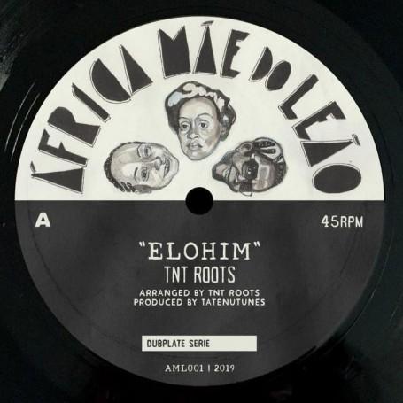 """(10"""") TNT ROOTS - ELOHIM / DUB"""