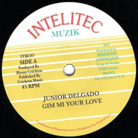 "(7"") JUNIOR DELGADO - GIM MI YOUR LOVE / VERSION"
