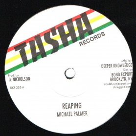 "(12"") MICHAEL PALMER - REAPING / FRANKIE JONES - ACTING SO STRANGE"