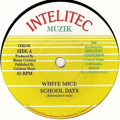"(7"") WHITE MICE - SCHOOL DAYS (Alternative Mix) / VERSION"