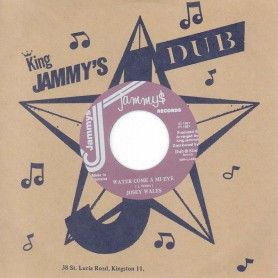 "(7"") JOSEY WALES - WATER COME A MI EYE / ADMIRAL BAILEY ‎– MI AH DE DANGER"