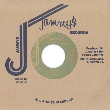 "(7"") ECHO MINOTT ‎– I AM BACK / VERSION"