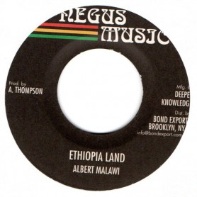 "(7"") ALBERT MALAWI - ETHIOPIA LAND / VERSION"