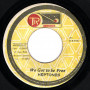 """(7"""") THE HEPTONES - WE GOT TO BE FREE / DISCO DUB"""