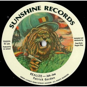 "(12"") PATRICK GORDON - REALIZE / SUNSHINE BAND VERSION"