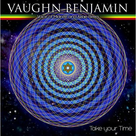 "(7"") VAUGHN BENJAMIN - TAKE YOUR TIME / RIDDIM ACTIVIST & HITMAN - DUB YOUR TIME"