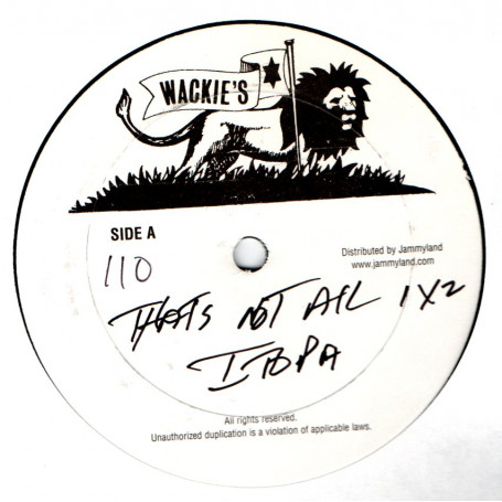 """(12"""") FABIAN COOKE & ITOPIA - THAT'S NOT ALL / SING A SONG"""