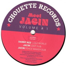 """(12"""") DANNY RED - JAH FAMILY / LOST WORLD"""