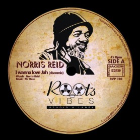 "(12"") NORRIS REID - I WANNA LOVE JAH (Discomix) / Mr HAZE & THE SOA - MEDITATOR'S SKANK"