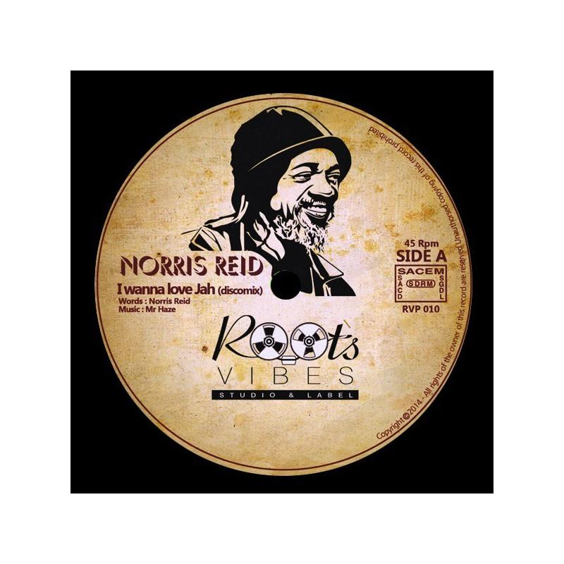 "(12"") NORRIS REID - I WANNA LOVE JAH (Discomix) / Mr HAZE & THE SOA - MEDITATOR'S SKANK"