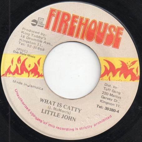 "(7"") LITTLE JOHN - WHAT IS CATTY / VERSION"