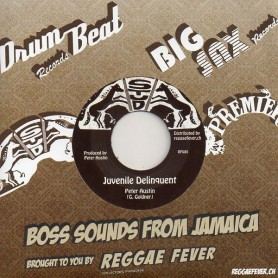 "(7"") PETER AUSTIN - JUVENILE DELINQUENT / VERSION"