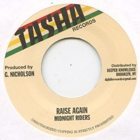 "(7"") MIDNIGHT RIDERS - RAISE AGAIN / VERSION"