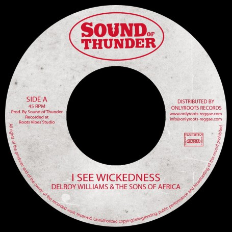 "(7"") DELROY WILLIAMS & THE SONS OF AFRICA - I SEE WICKEDNESS / Mr HAZE & THE SONS OF AFRICA - WISEST DUB"