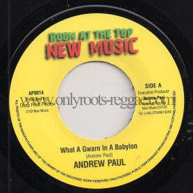 "(7"") ANDREW PAUL - WHAT A GWARN IN A BABYLON (RADIO MIX) / DUB"