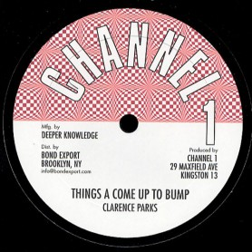 "(10"") CLARENCE PARKS - THINGS A COME UP TO BUMP / DUB"