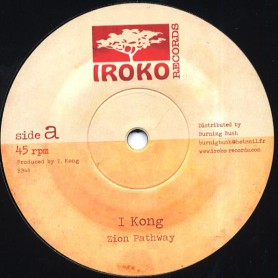 """(12"""") I KONG - ZION PATHWAY / TAKE A HOLD"""