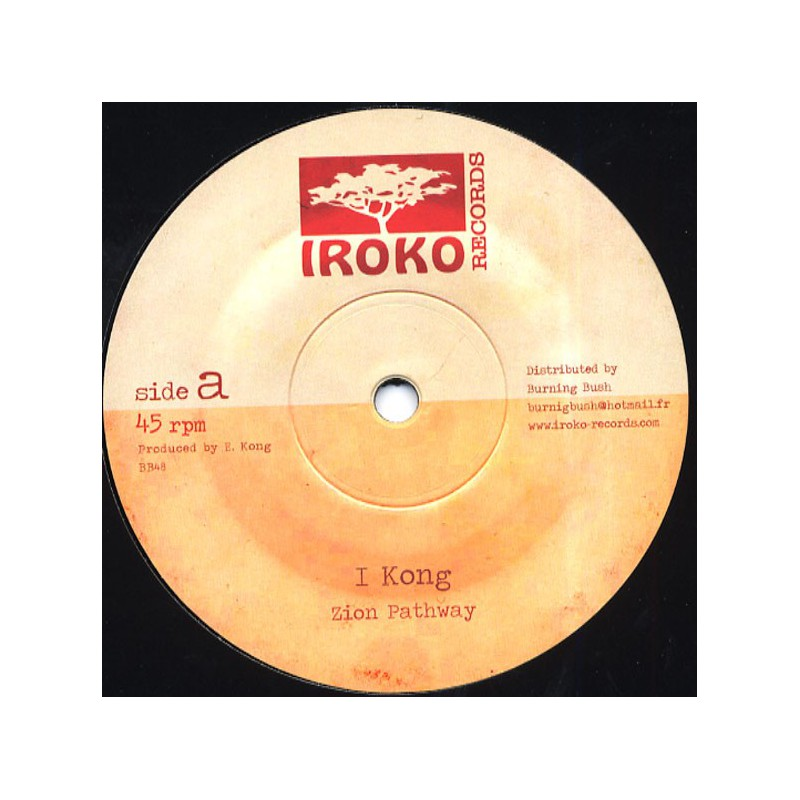 "(12"") I KONG - ZION PATHWAY / TAKE A HOLD"