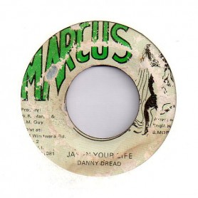 "(7"") DANNY DREAD - JAH IN YOUR LIFE / VERSION"