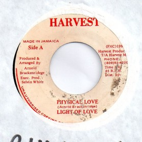 "(7"") LIGHT OF LOVE - PHYSICAL LOVE / DUB"