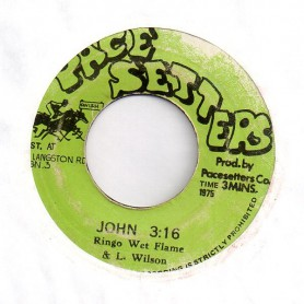 "(7"") RINGO WET FLAME & LEONARD WILSON - JOHN / JOHNNY DUB"
