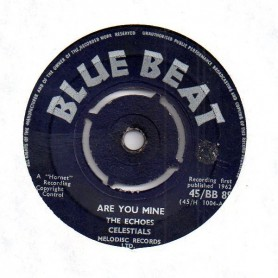 "(7"") THE ECHOES - ARE YOU MINE / I LOVE YOU FOREVER"