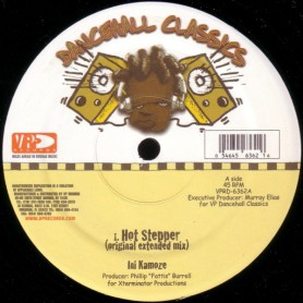 "(12"") INI KAMOZE - HOT STEPPER / VERSION"