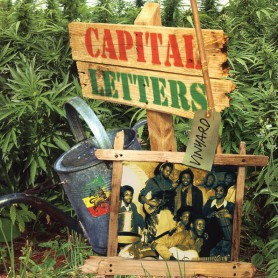 (LP) CAPITAL LETTERS - VINYARD