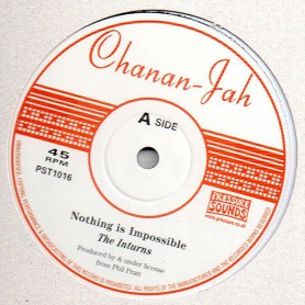 """(10"""") THE INTURNS - NOTHING IS IMPOSSIBLE / DETOUR"""
