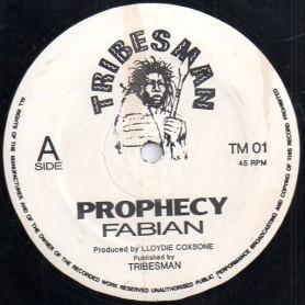 "(12"") FABIAN MIRANDA - PROPHECY / PROPHECY DUB"