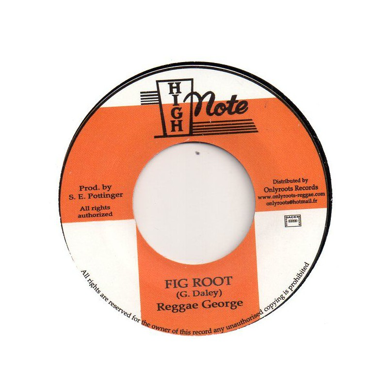 """(7"""") REGGAE GEORGE - FIG ROOT / SKY NATION - ROOTS VERSION WISE"""