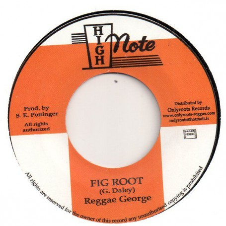 "(7"") REGGAE GEORGE - FIG ROOT / SKY NATION - ROOTS VERSION WISE"