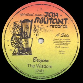"(12"") BRIZION - THE WISDOM / THE POSITIVE VIBES"