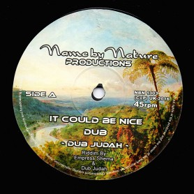 """(10"""") DUB JUDAH - IT COULD BE NICE / SMOKE AND MIRRORS AND CREDIT CARDS"""