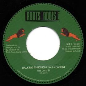 "(7"") RAS JOHN B - WALKING THROUGH JAH MEADOW / ALPHA B - WALKING WITH JAH DUB"