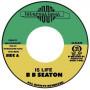 "(7"") BB SEATON - IS LIFE / DUB WID LIFE"