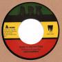 """(7"""") BENJAMIN - SONS & DAUGHTERS / LONE ARK RIDDIM FORCE - DUB VERSION"""