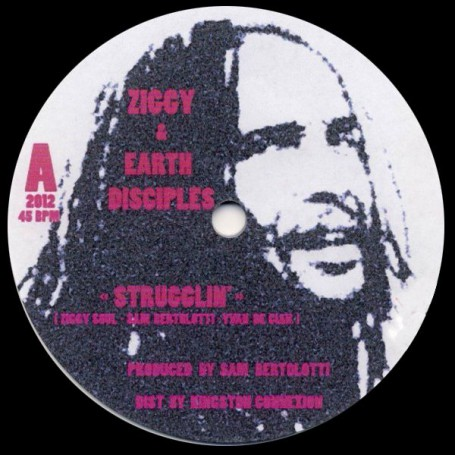 "(12"") ZIGGY & EARTH DISCIPLES - STRUGGLIN / STRUGGLIN DUB"